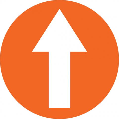 Arrow In Circle - Orange