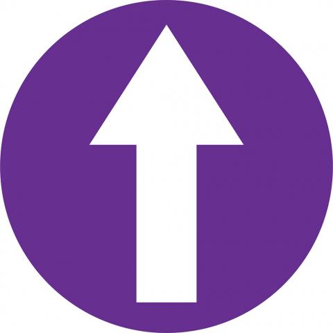 Arrow In Circle - Violet