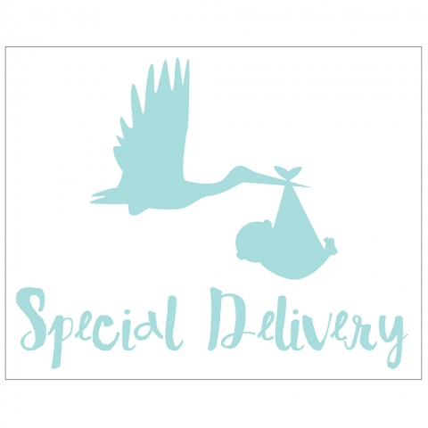 Special Delivery with Stork