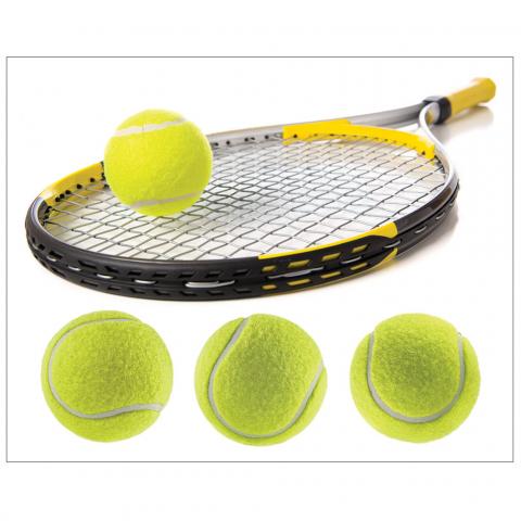 Racquet with Tennis Balls