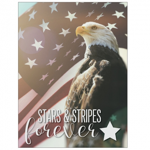 Stars and Stripes Forever Eagle Flag