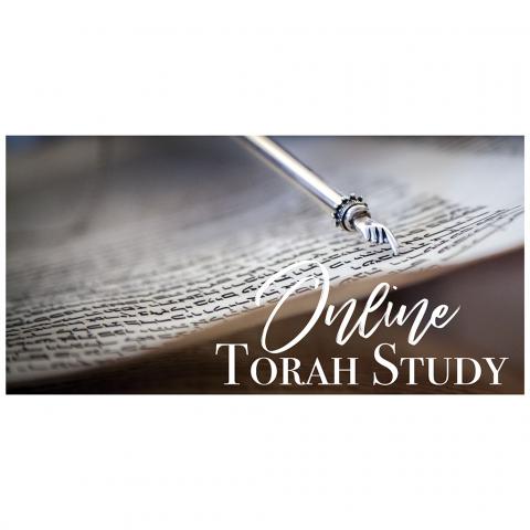 Online Torah Study